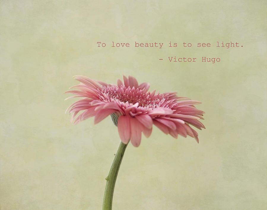 Pink Flower Photograph - To See Light by Kim Hojnacki