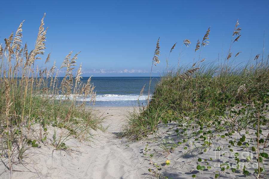 Obx Photograph - To The Beach by Kay Pickens