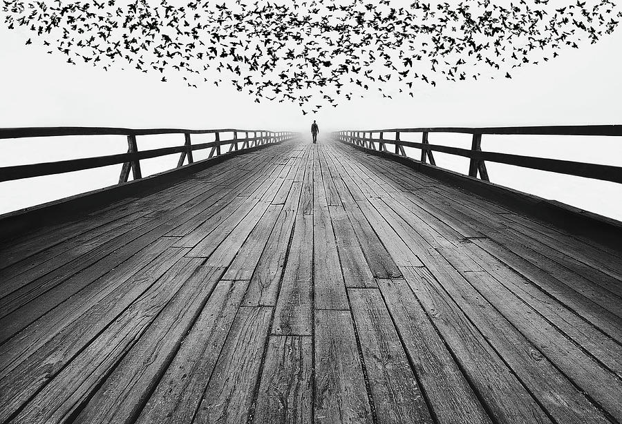 Lines Photograph - To The End by Mandru Cantemir