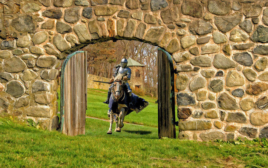 Knight Photograph - To The Rescue by Liz Mackney