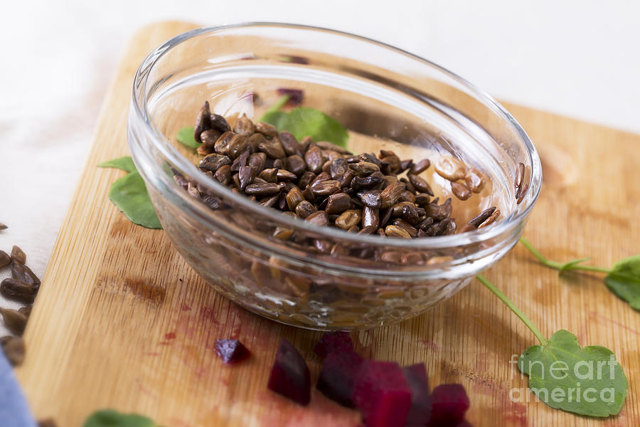 Toasted Sunflower Seeds Photograph