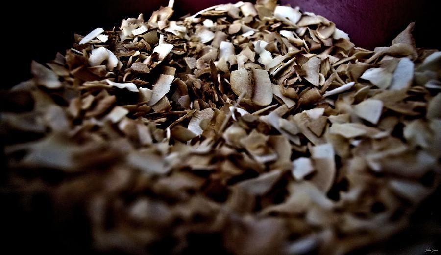 Coconut Photograph - Toasty Coconut by John Grace