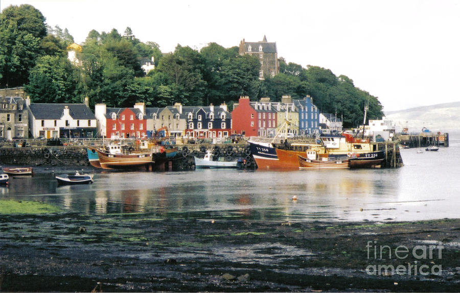 Tobermory Photograph - Tobermory Harbour by Mark Bowden