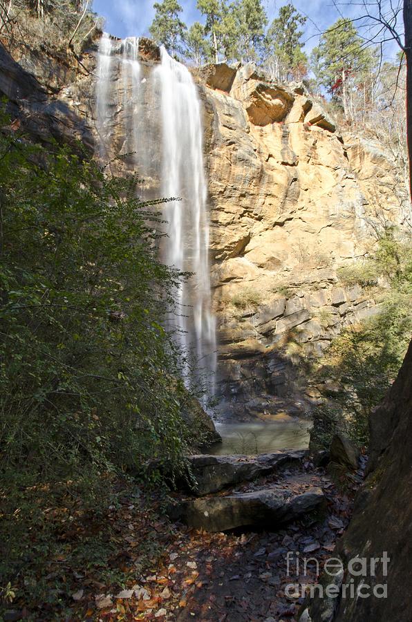 America Photograph - Toccoa Falls by Debra Johnson