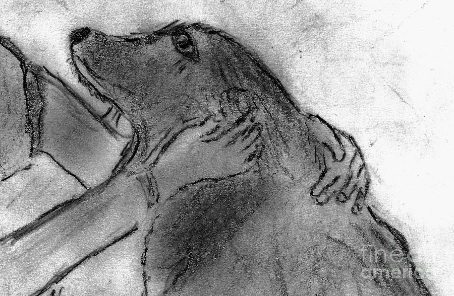 Dog Drawing - Togetherness by Elizabeth Briggs