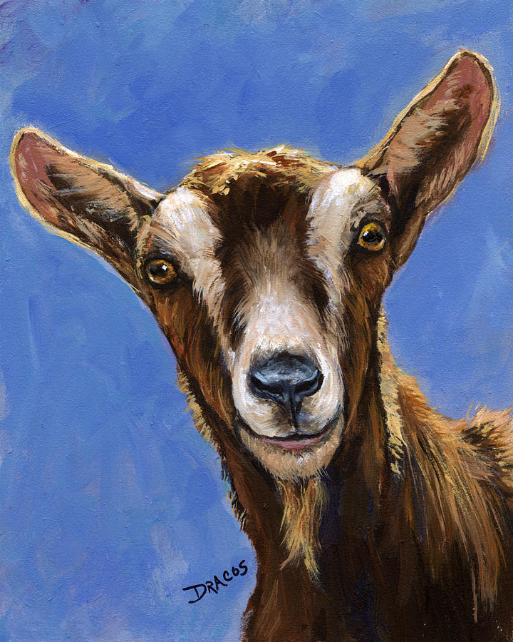 toggenburg goat on blue painting by dottie dracos