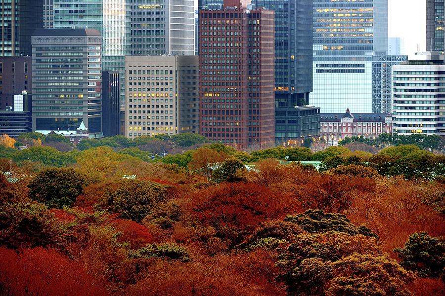 Tokyo Marunouchi Photograph by Vladimir Zakharov
