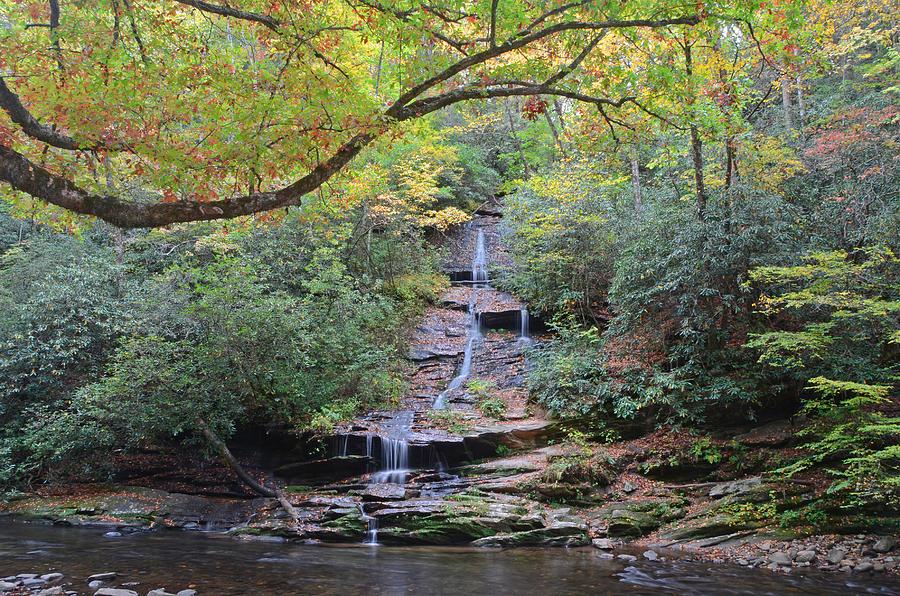 Deep Creek Photograph - Tom Branch Falls in Deep Creek Bryson City by Mary Anne Baker