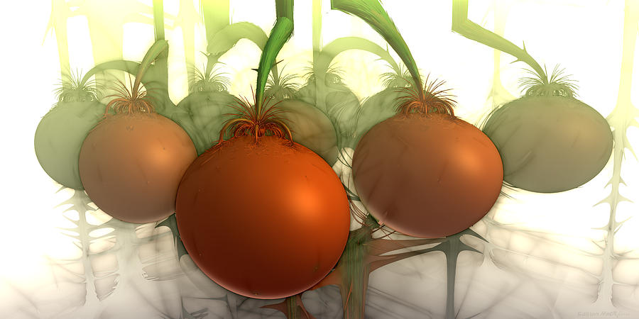 3d Fractal Digital Art - Tomaten by Bramvan