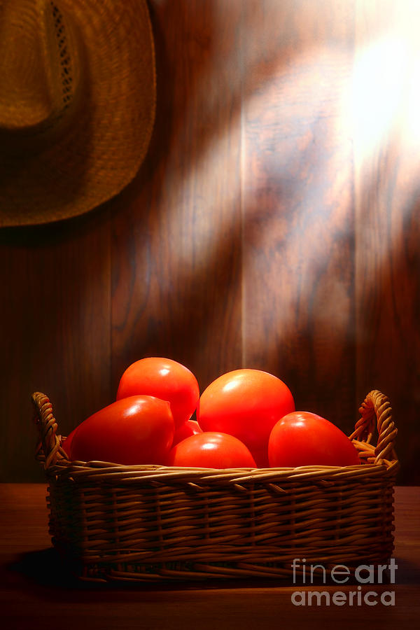 Tomatoes Photograph - Tomatoes At An Old Farm Stand by Olivier Le Queinec