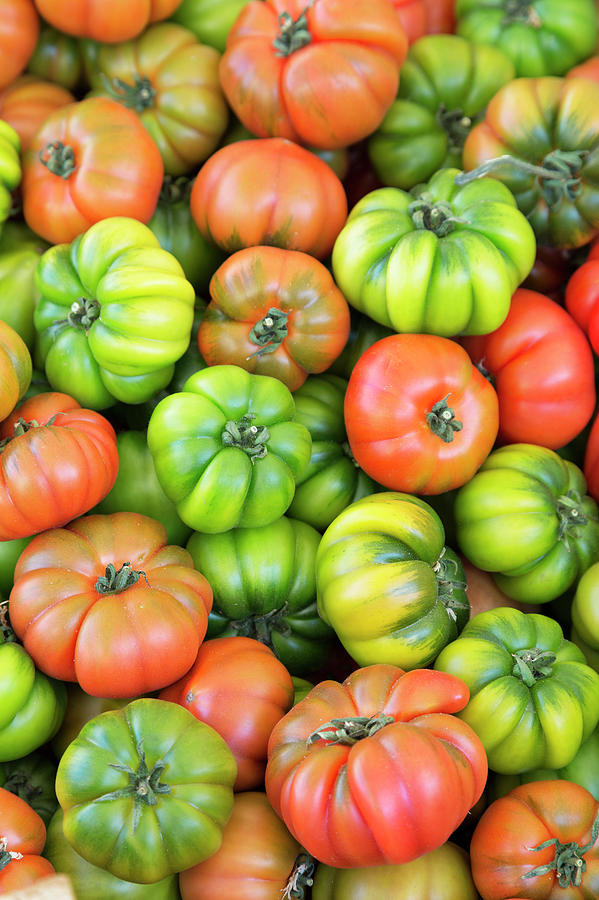 Tomatoes For Sale In A Market In Photograph by Martin Child