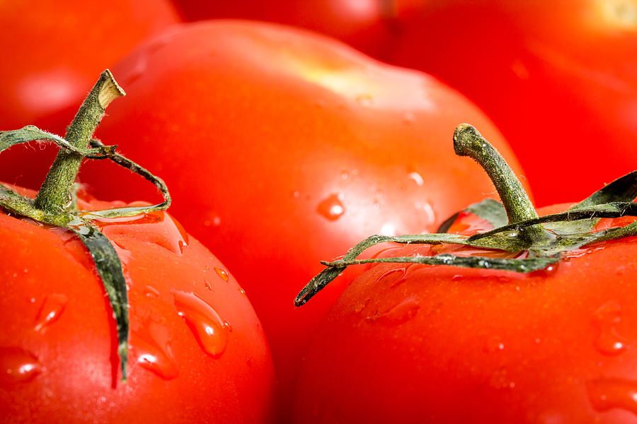 Tomato Photograph - Tomatoes. by Gary Gillette