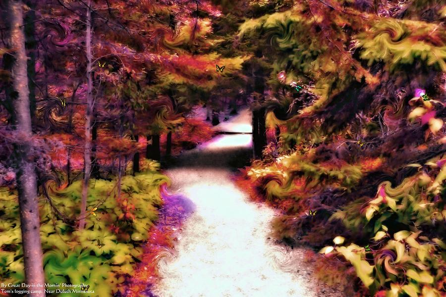 Up North Photograph - Toms Path by Michelle and John Ressler
