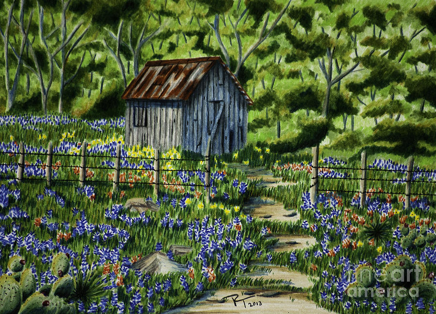 Landscape Drawing - Tool Shed by Robert Thornton