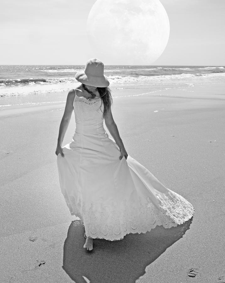 Topsail Photograph - Topsail Paradise by Betsy Knapp