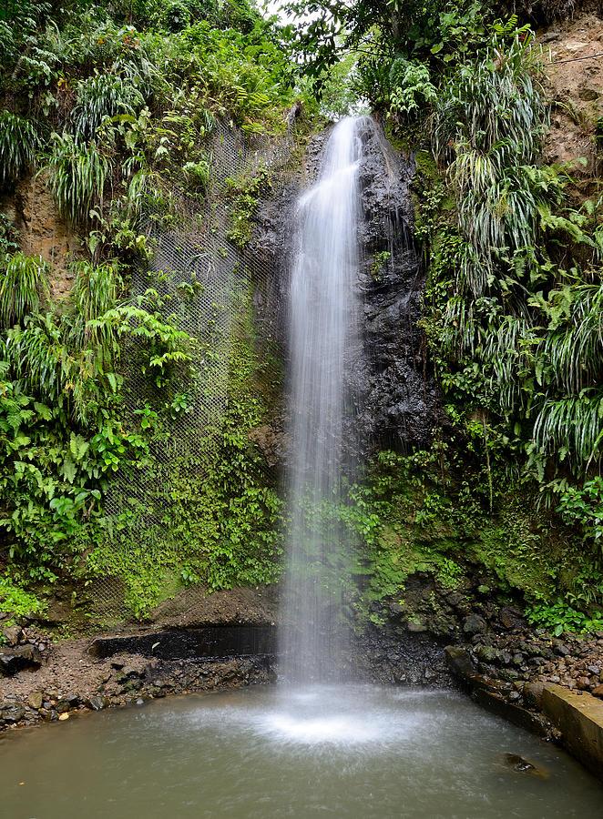 Waterfall Photograph - Toraile Waterfall - Saint Lucia by Brendan Reals
