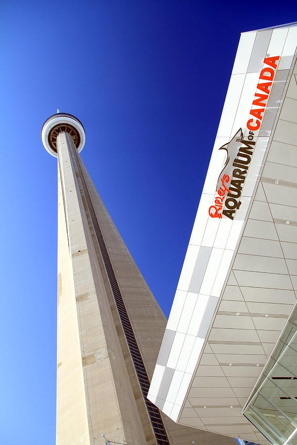 Toronto Photograph - Toronto Landmarks by Valentino Visentini