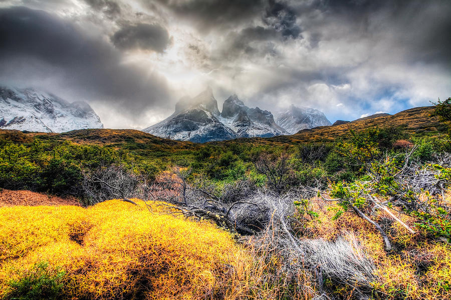 Chile Photograph - Torres Del Paine Peaks by Roman St