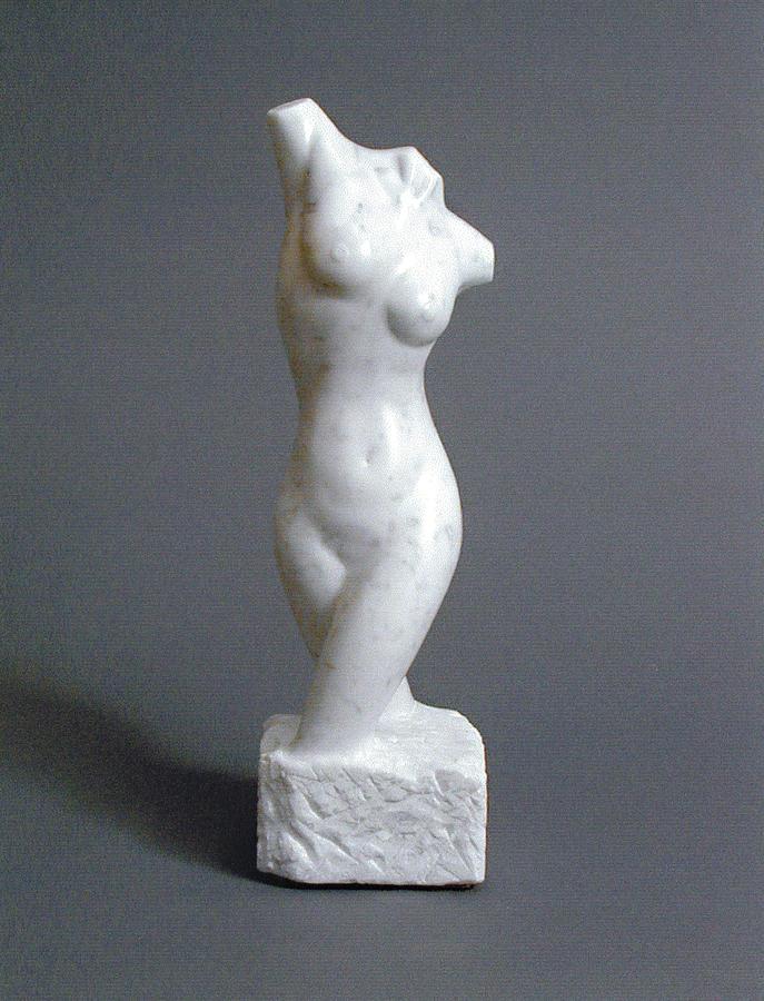 Female Sculpture - Torso by Leslie Dycke