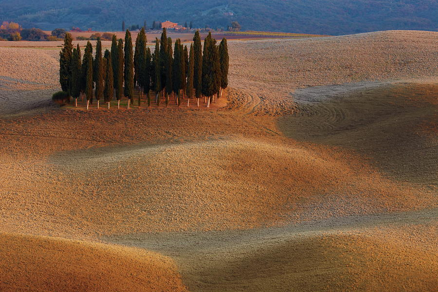 Tuscany Photograph - Toscana by Vadim Balakin