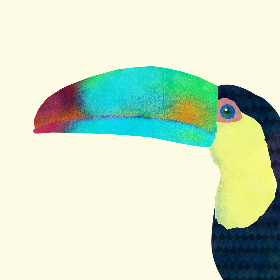 Bird Drawing - Toucan by Eric Fan
