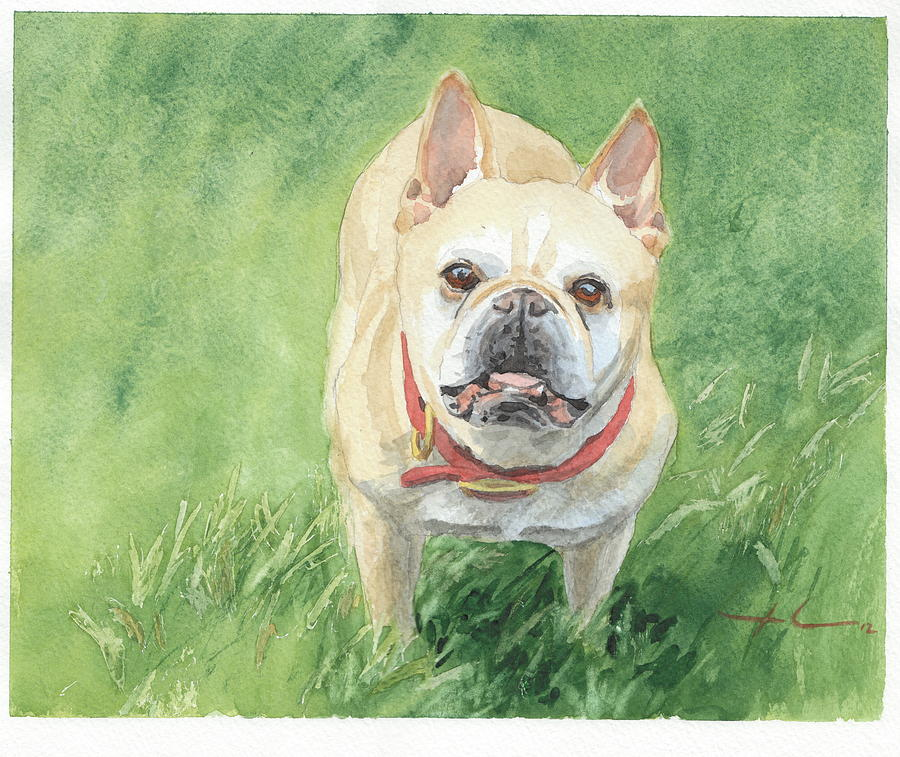 Tough Little Dog Watercolor Portrait Drawing by Mike Theuer
