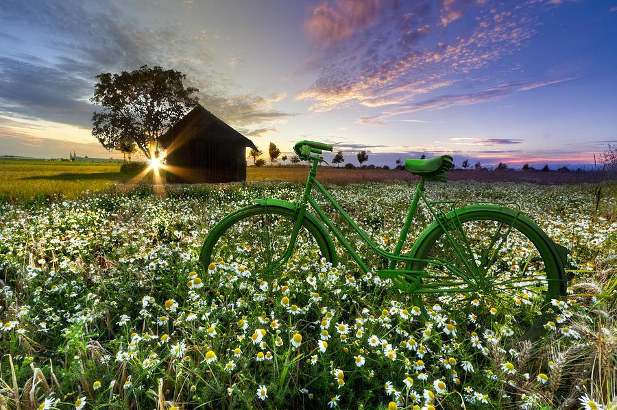 Appalachia Photograph - Tour De France by Debra and Dave Vanderlaan