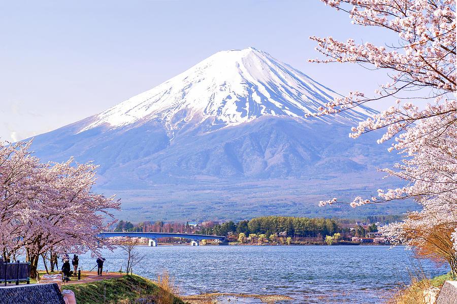 Hasil gambar untuk fuji mountain