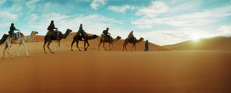 Horizontal Photograph - Tourists Riding Camels by Animal Images