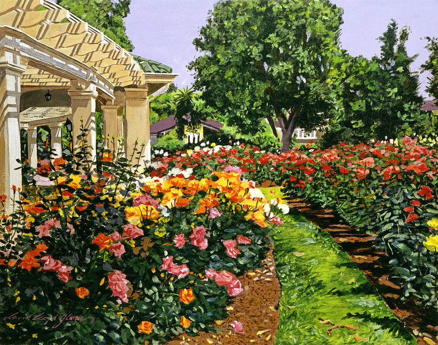 Roses Painting - Tournament Of Roses II by David Lloyd Glover