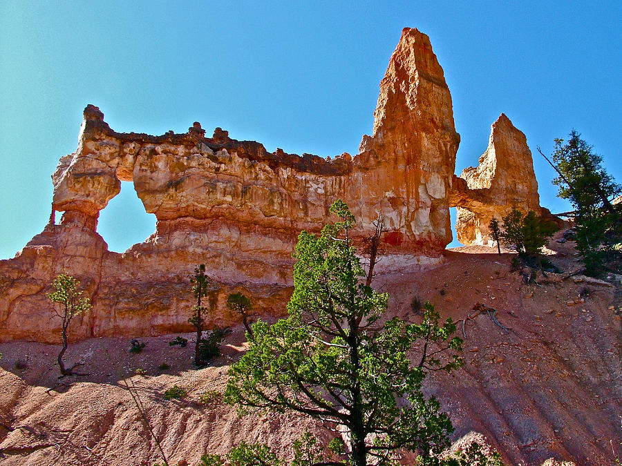Tower Bridge From Fairyland Loop Trail In Bryce Canyon National Park Utah Photograph By Ruth Hager