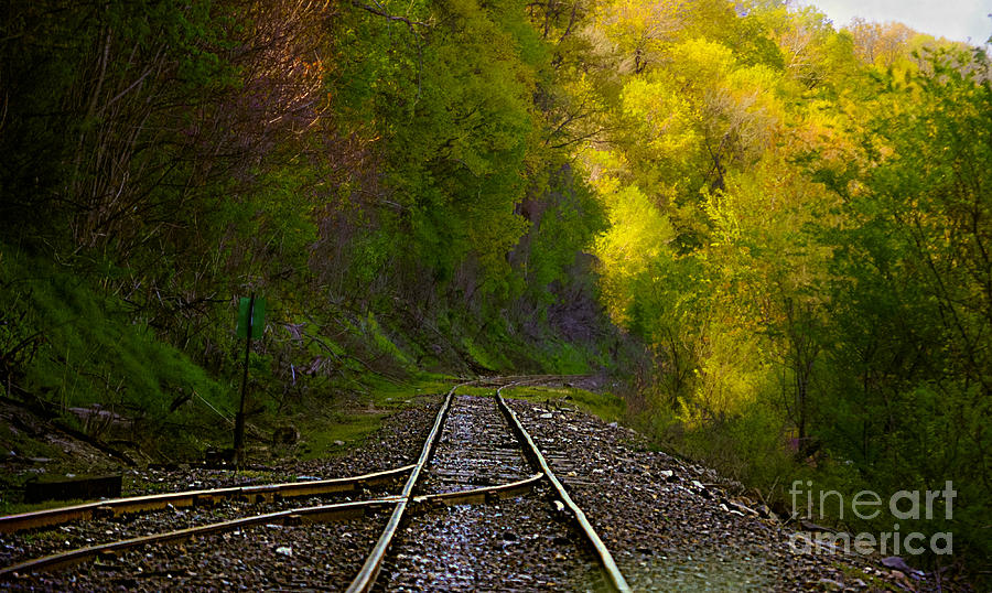 Railroad Tracks Landscape Photograph - Track Through The Hillside  by Peggy Franz