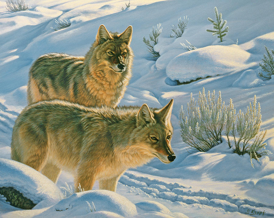 Wildlife Painting - Trackers by Paul Krapf
