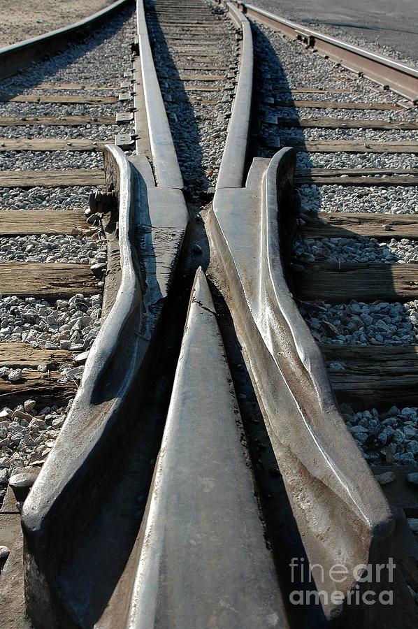 Railroad Photograph - Tracks by Dan Holm