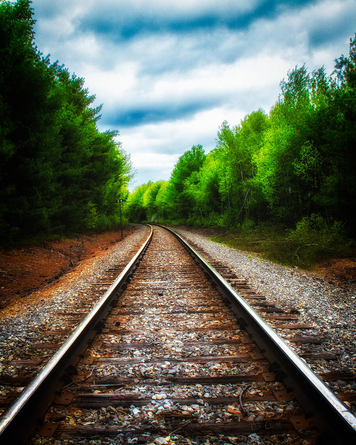 Landscape Photograph - Tracks Through The Woods by Bob Orsillo
