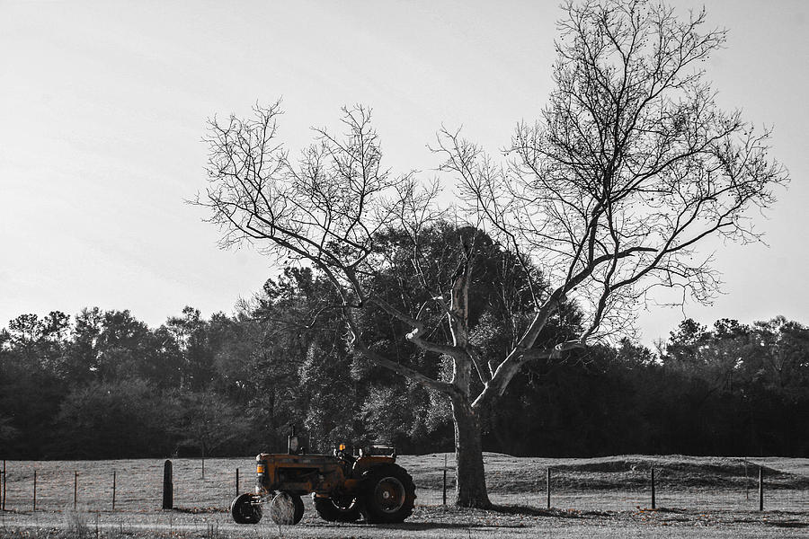 Tractor Photograph - Tractor For Sale by Steven  Taylor