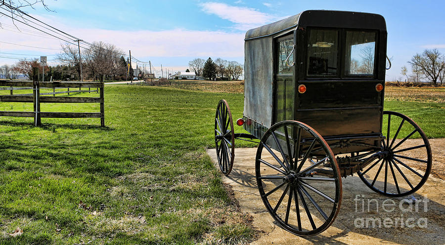 Amish People Photograph - Traditional Amish Buggy by Lee Dos Santos