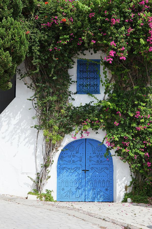 Traditional House In Tunisia Photograph by Dzika mrowka