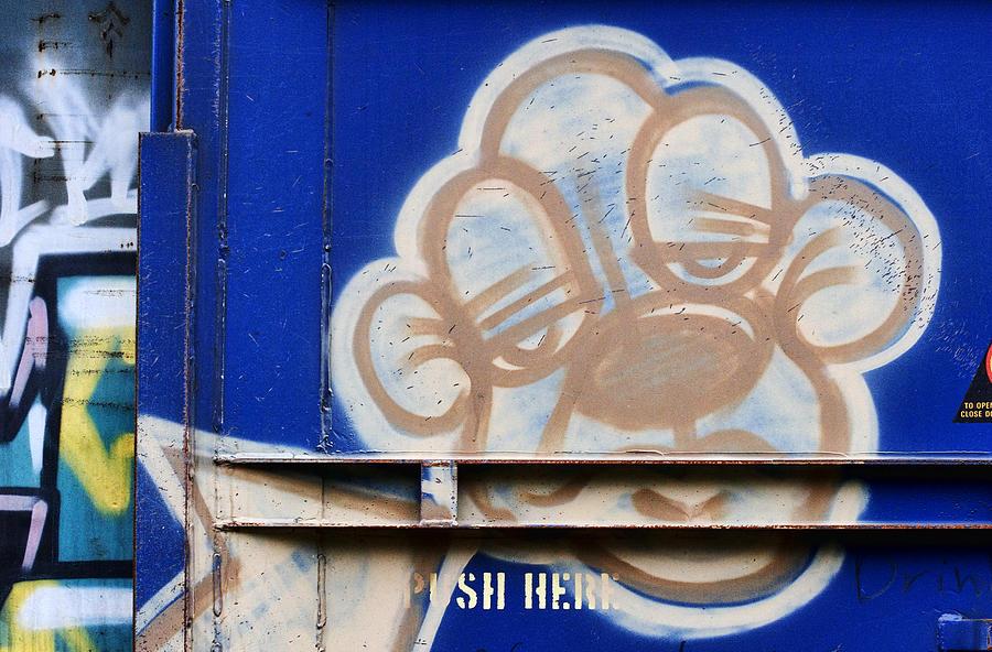 Graffiti Photograph - Train Art Cartoon Dog by Carol Leigh
