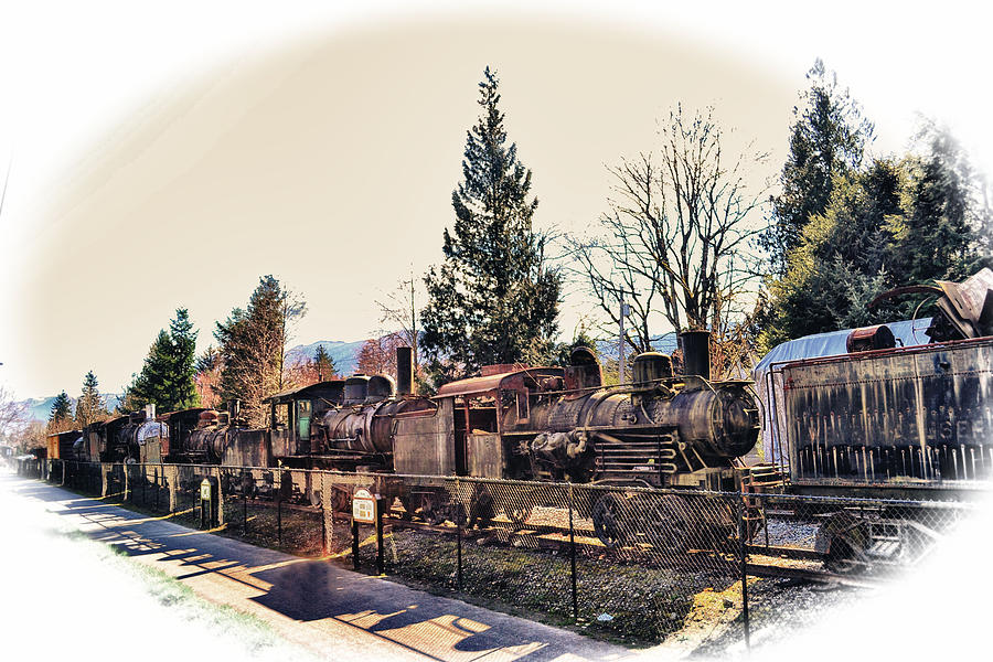 Old Photograph - Train Graveyard by Kelly Reber