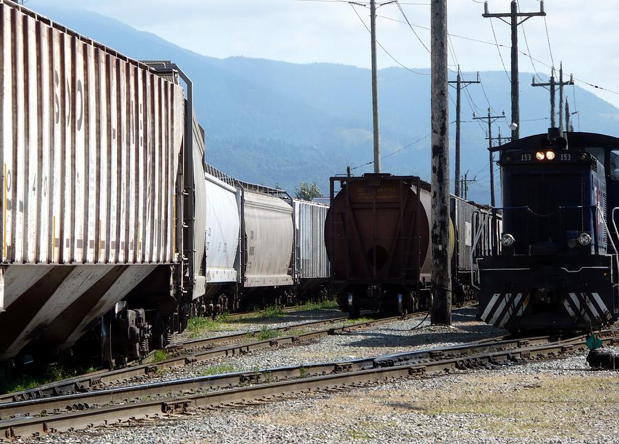 Train Photograph - Train Shunting Station by Nicki Bennett