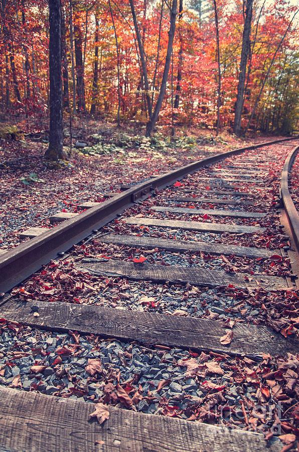 Brilliant Photograph - Train Tracks by Edward Fielding