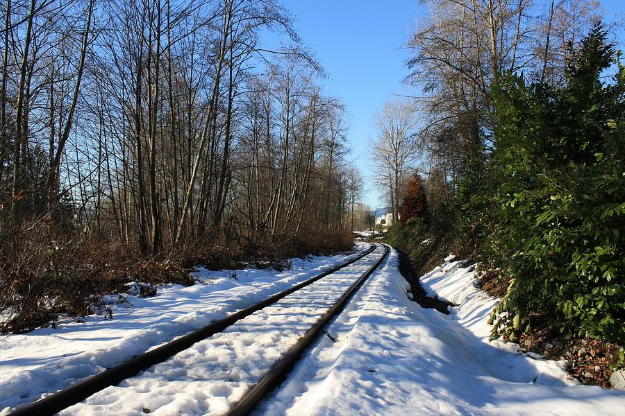 train tracks by Stefan Kaertner