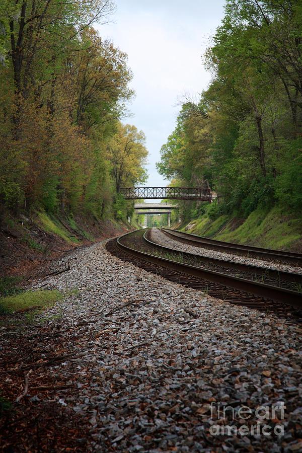 Beams Photograph - Train Tracks by Suzi Nelson