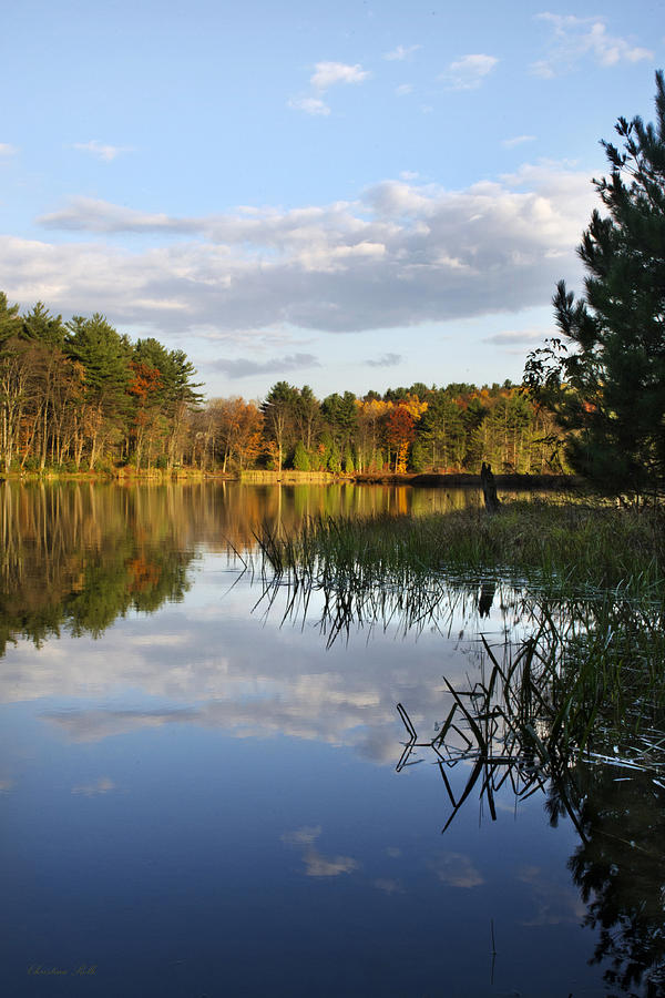 Tranquil Photograph - Tranquil Autumn Landscape by Christina Rollo