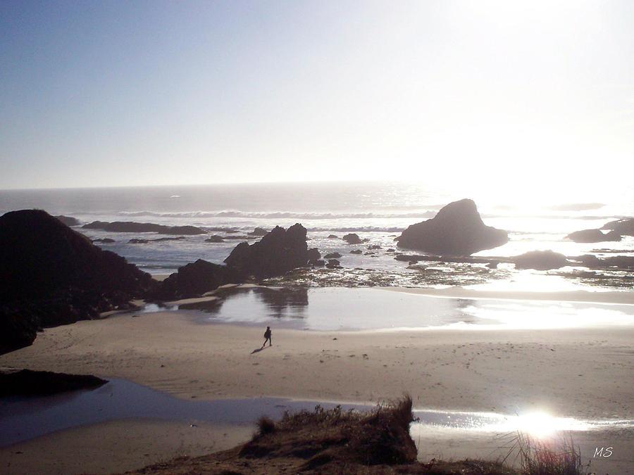 Beach Photograph - Tranquil Beach by Absinthe Art By Michelle LeAnn Scott