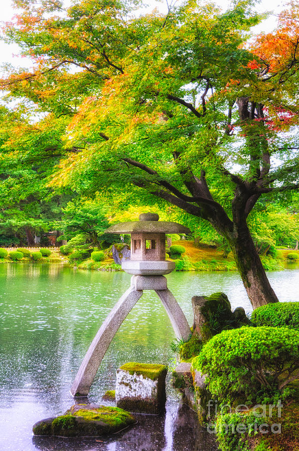 Japanese Photograph - Tranquil Japanese Garden - Kenrokuen - Kanazawa - Japan by  David Hill