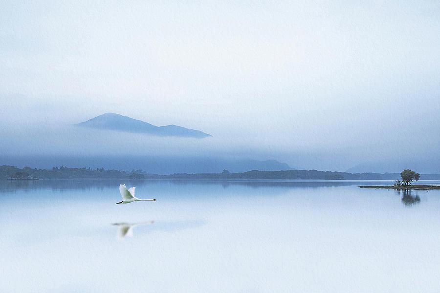 Lake Photograph - Tranquility by Kieran O Mahony