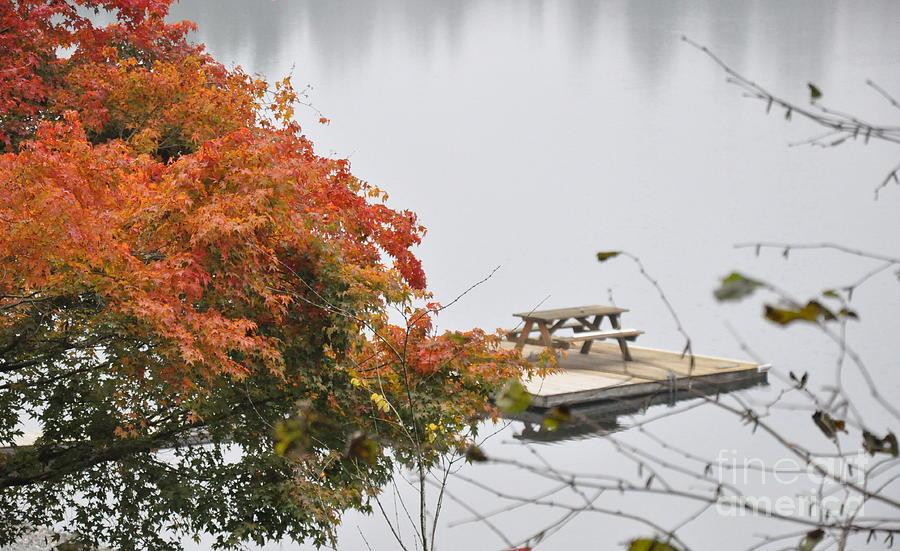 Fall Photograph - Tranquility by Tanya  Searcy