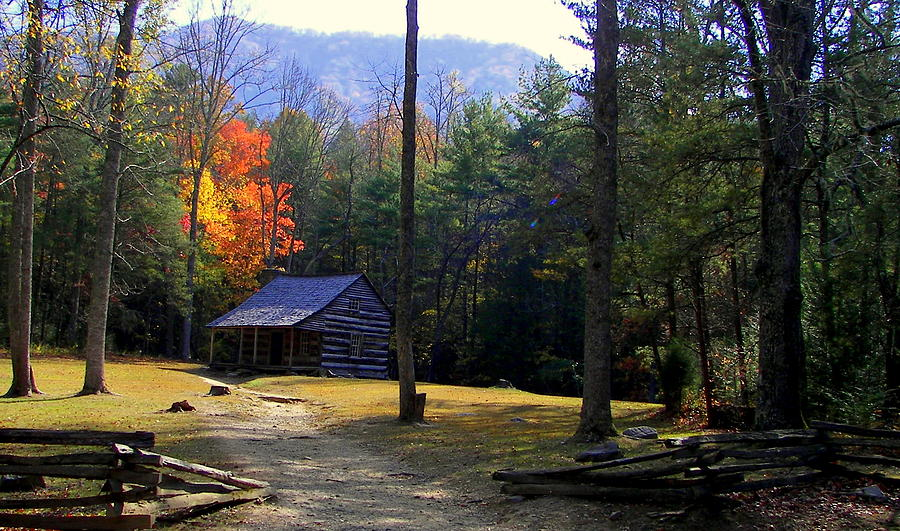 Cabins Photograph - Traveling Back In Time by Karen Wiles